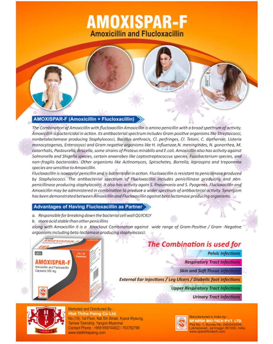 pharmaceutical company in Myanmar